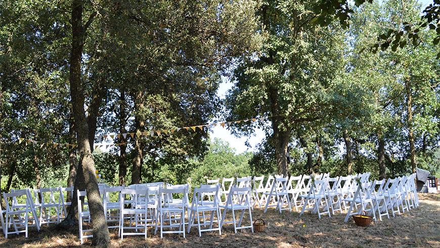 cerimonia-casament-la-tria-al-bosc_11